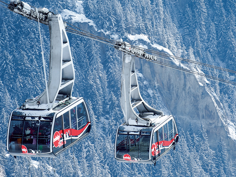Reversible Aerial Tramway Products